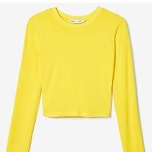 Express x Olivia Culpo Crop T-Shirt